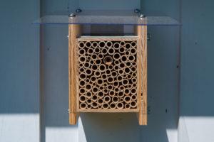 Das BeeHome von Wildbiene + Partner